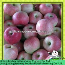 Китай свежее королевское красное гала-яблоко