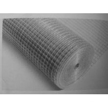 Hot Dip Galvanized Welded Wire Mesh (HDW09)