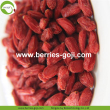 Pierda el peso seco Natural saludable Tibet Goji Berry