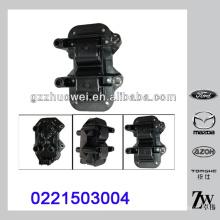 Autos Zubehör 1.6 Zündspule für Citroen Peugeot 0221503004 0221503007