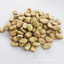 2020 new crop High quality broad beans Qinghai origin whole fava beans in shell