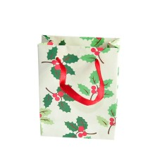 Gift Colorful Printing Fancy Shopping Paper Bag