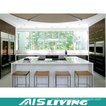 Modular Kitchen Furniture Designs Kitchen Cabinets (AIS-K423)