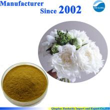 100% pur naturel Paeonia Lactiflora Pall Extrait