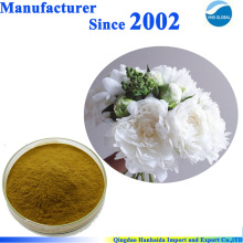 100% pure natural Paeonia Lactiflora Pall Extract