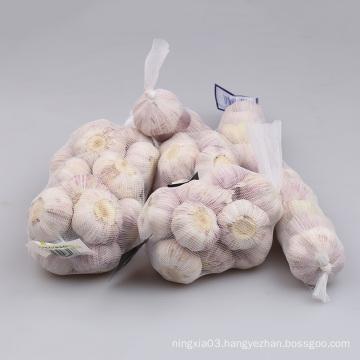 High Quality Fresh White Garlic for sale