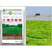 Extrait d'algues microbiennes à base d'extrait organique pour l'assèchement des sols
