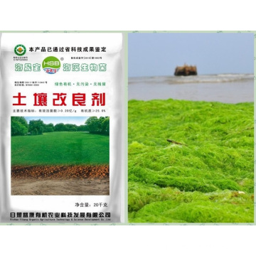 Microbial Seaweed extract base organic manure for soil conditioner
