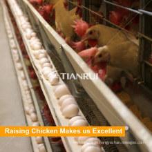 China Hochwertige Viehbestand Hühnerkäfige für Schicht