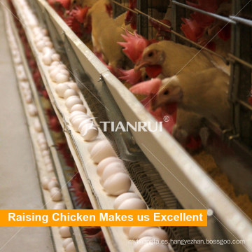 Termine la maquinaria agrícola controlada de la vertiente de las aves de corral para la casa del pollo