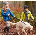 Training Walking Dog  Lead