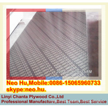 Linyi 15-20 repeat use times phenolic glue brown film faced plywood