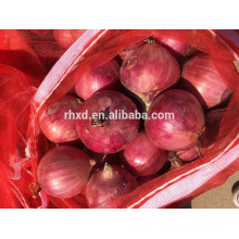 Chinese fresh onion on sale before the new year