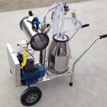 Milking machine with vacuum pump motor