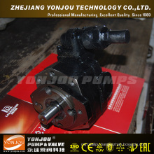 High Pressure Oil Pump (BBG)