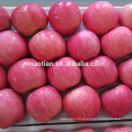 Apple Fuji Rosy blush for Indonesia