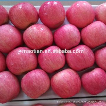 Apple Fuji Rosy corar para a Indonésia