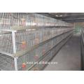 Ausrüstung für Masthähnchenkäfige für Geflügel und Masthähnchen
