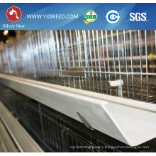 China Low Cost Layer Cage with Poultry Equipment