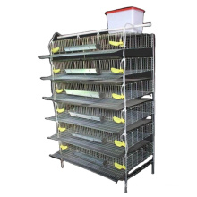 Quail cage with food trough and drinking device