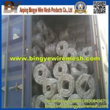 Exportación de calidad Hot Sales Galvanized Razor Barbed Wire