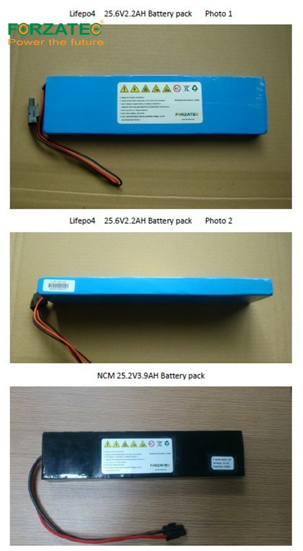 24V10Ah LFP Lithium Ion Battery