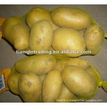 Поставщик свежего картофеля