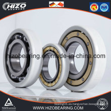 Bearing Manufacturer Supplier Electric Insulation Bearings