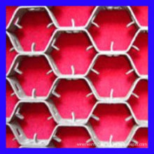 plastic hexagon grid with a hole of 50mm