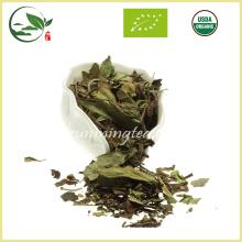 Thé blanc biologique Bai Mu Tan de première qualité