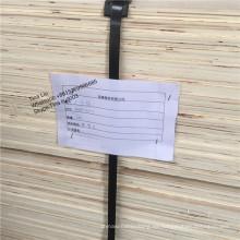 madera contrachapada llena del lvl del álamo para el mueble / el embalaje, el mejor lvl del alto grado para el palillo de madera de construcción