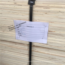 madeira compensada cheia do lamo do álamo para o funiture / embalagem, o melhor lvl da categoria alta para a vara da madeira da construção