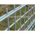 Anping facory экспорт декоративный забор из двух проволоки
