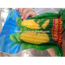 Iqf épinard au maïs sucré