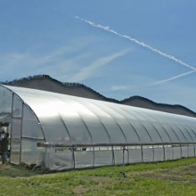 Low Cost for Greenhouse Film Long Life Prefabricated Simple Structure Tunnel Greenhouse supply to Monaco Wholesale