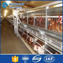 best design A-type material and chicken use poultry farm shed for chickens
