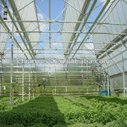 Professional Agricultural Greenhouse equipment pc roofing sheet
