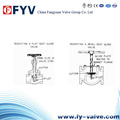 Bellow Sealed Globe Valve Stop Valve (Y-Type)