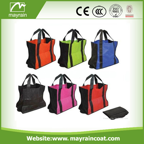 Special Promotion Bags