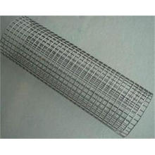 The High Quality Galvanized/ PVC Coated Welded Wire Mesh