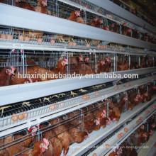 Design de fabricante profissional Um tipo de sistema de gaiolas de galinha para venda