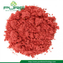 Wholesales Freeze Dried Cranberry Powder