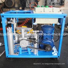 Inicio CNG Compresor para el coche CNG Compresor Precio (bx6cngd)