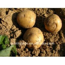 Venta de patatas frescas
