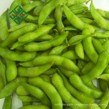 fresh frozen frozen fruits and vegetabes