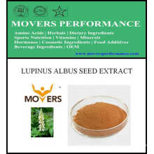 Hot Slaes Cosmetic Ingredient: Lupinus Albus Seed Extract