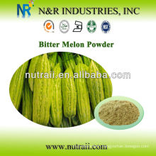 Natural and Pure Plant Powder Fresh Bitter Melon Powder or Bitter Melon Juice Powder