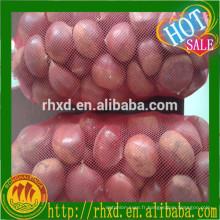 export 2015 nouvelle récolte châtaigne chinoise fraîche avec gros noyau