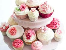 뜨거운 판매 새로운 케이크 컵 및 경우 2015