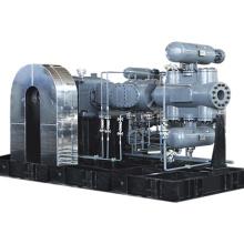 High pressure Reciprocating Piston Compressor Hydrogen Chloride Methyl Chloride Gas Compressor